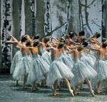 American Ballet Theatre's The Nutcracker 2014
