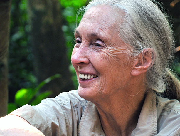BAM   Sowing the Seeds of Hope: An Evening with Dr. Jane Goodall