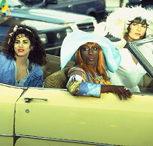To Wong Foo, Thanks for Everything, Julie Newmar, Major League: Wesley Snipes in Focus